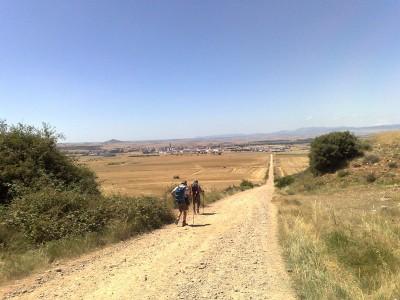 Táj - El Camino