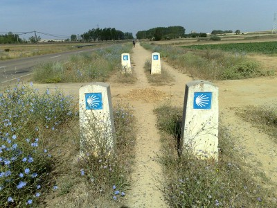 lélekölő út - El Camino