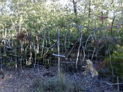 Kerítés keresztekkel