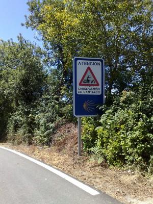 Vigyázat, itt megy a Camino!