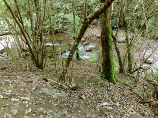 Az egyik patak