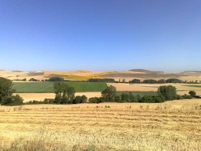 Megint tájkép - El Camino