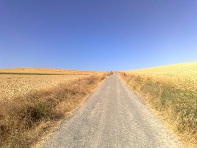 Búza - el camino
